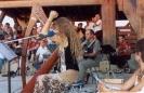 2005 Concerto celtico al Tramonto (3)