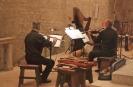 16 2007 Concerto sui 4 elementi nell'Eremo di Fonte Avellana (4)